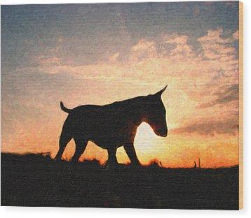Bull Terrier At Sunset Wood Print by Michael Tompsett