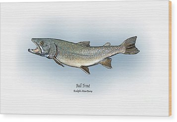 Bull Trout Wood Print by Ralph Martens