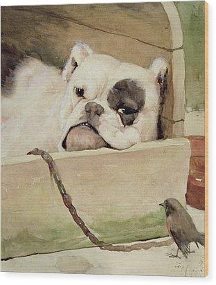 Bulldog Wood Print by Cecil Charles Windsor Aldin