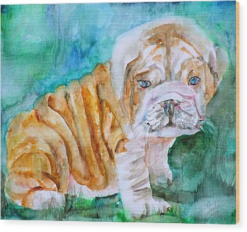 Wood Print featuring the painting Bulldog Cub  - Watercolor Portrait by Fabrizio Cassetta