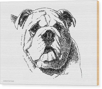 Bulldog-portrait-drawing Wood Print by Gordon Punt