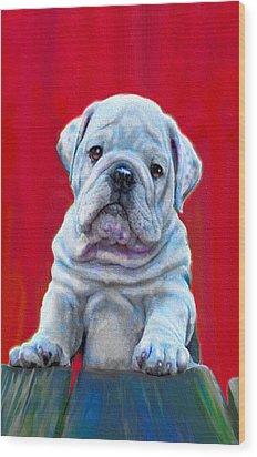 Bulldog Puppy On Red Wood Print by Jane Schnetlage