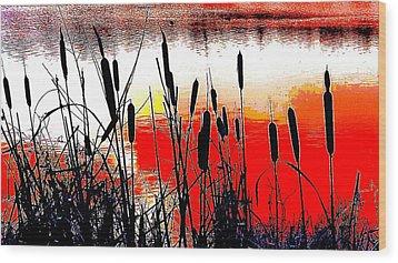 Bullrushes Against The Sunset Wood Print