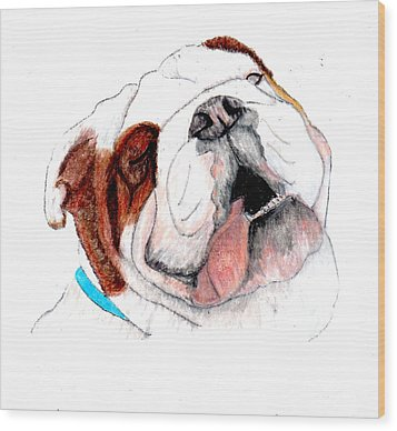 Wood Print featuring the drawing Bully For You by Barbara Giordano