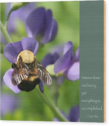 Bumble Bee With Zen Quote Wood Print