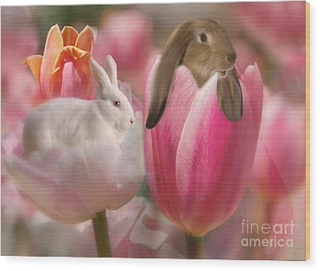 Bunny Blossoms Wood Print by Elaine Manley