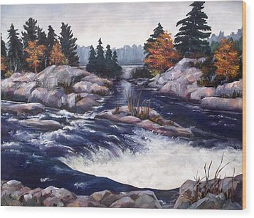Wood Print featuring the painting Burleigh Falls by Diane Daigle