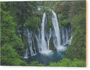 Wood Print featuring the photograph Burney Creek Falls by Patricia Davidson
