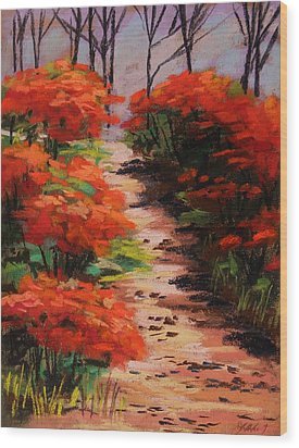 Burning Bush Along The Lane Wood Print by John Williams