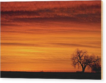 Burning Country Sky Wood Print by James BO  Insogna