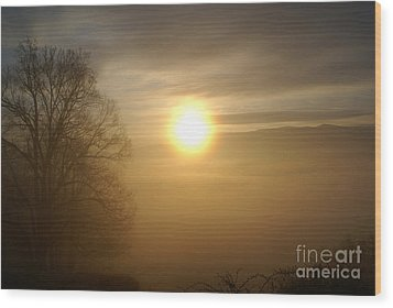 Burning Off The Fog Wood Print by Annlynn Ward