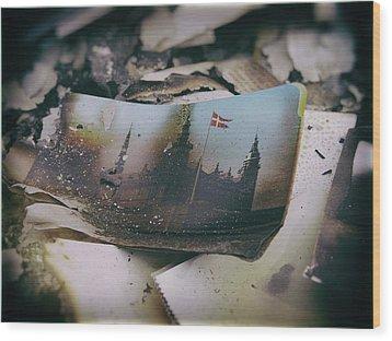 Burnt Wood Print by Karen Stahlros