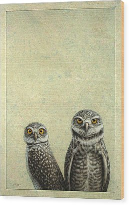 Burrowing Owls Wood Print by James W Johnson