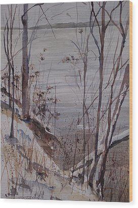 Burt Lake In Winter Wood Print by Sandra Strohschein