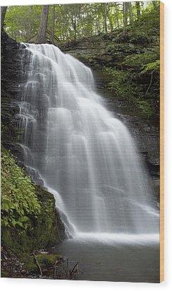 Bushkill Falls - Daughter Fall Wood Print