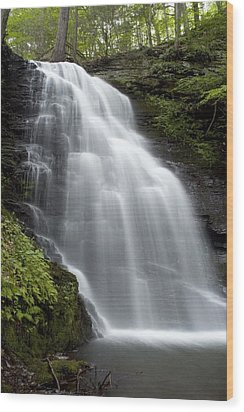 Bushkill Falls - Daughter Fall Wood Print by Don Mennig