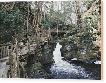Bushkill Falls Boardwalk 2 Wood Print