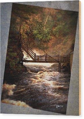 Wood Print featuring the photograph Bushkill Falls by Phil Mancuso