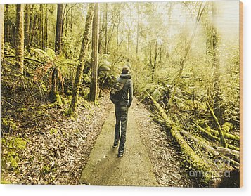 Wood Print featuring the photograph Bushwalking Tasmania by Jorgo Photography - Wall Art Gallery