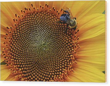 Wood Print featuring the photograph Busy Bee by Mike Martin