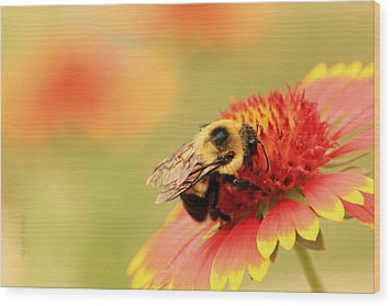 Wood Print featuring the photograph Busy Bumblebee by Chris Berry