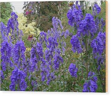 Butchart Gardens Blues Wood Print