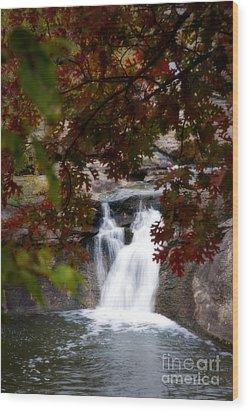 Butcher Falls In Autumn Colors Wood Print