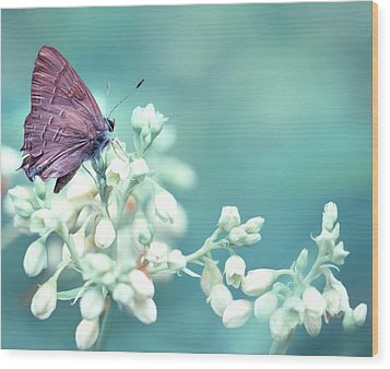 Buterfly Dreamin' Wood Print by Mark Fuller