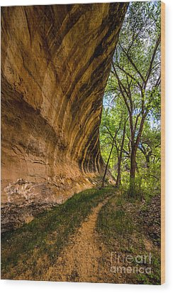 Wood Print featuring the photograph Butler Wash Wave Formation - Blanding - Utah by Gary Whitton
