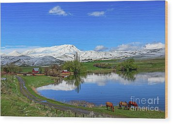 Wood Print featuring the photograph Butte Farm After Spring Snow by Robert Bales