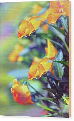 Wood Print featuring the photograph Buttercups by Jessica Jenney