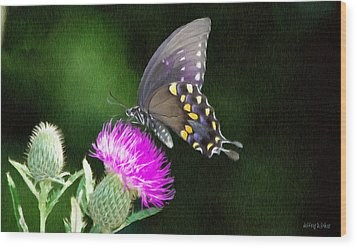 Butterfly And Thistle Wood Print by Jeff Kolker