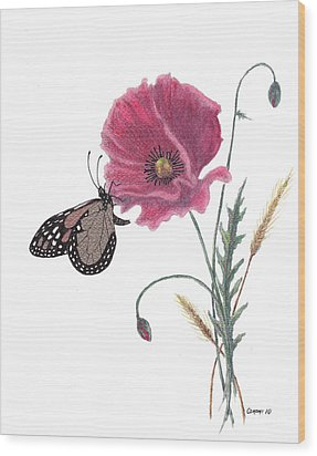 Butterfly Dreaming Wood Print by Stanza Widen