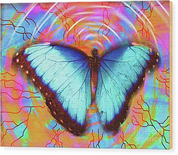 Butterfly Dreams Wood Print by Robert Ball