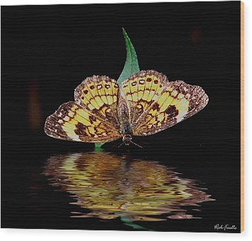 Wood Print featuring the photograph Butterfly Drink by Rick Friedle