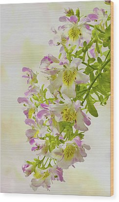 Butterfly Flowers  Wood Print by Sandra Foster
