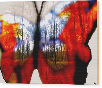 Butterfly Forest  C Wood Print by Debra     Vatalaro
