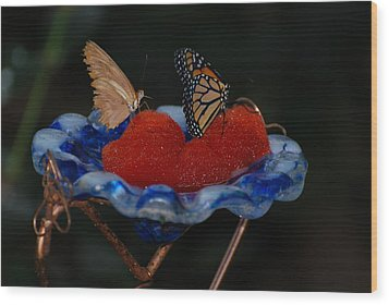 Wood Print featuring the photograph Butterfly Fruit by Richard Bryce and Family