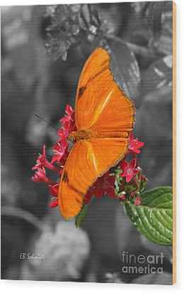 Wood Print featuring the photograph Butterfly Garden 16 - Julia Heliconian by E B Schmidt