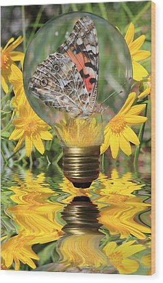 Butterfly In A Bulb II Wood Print by Shane Bechler
