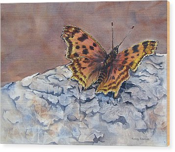 Butterfly-in-the-old-growth-forest Wood Print by Nancy Newman
