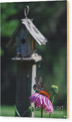 Wood Print featuring the photograph Butterfly by Lila Fisher-Wenzel