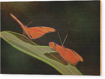 Butterfly Love 1a Wood Print