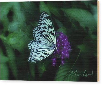 Wood Print featuring the photograph Butterfly by Miriam Shaw