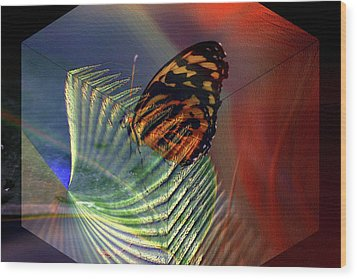 Wood Print featuring the photograph Butterfly Morphing by Irma BACKELANT GALLERIES