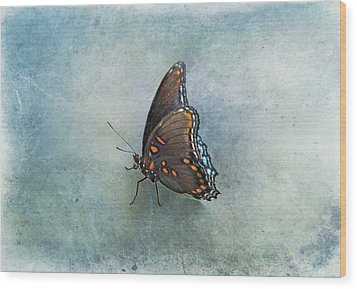 Wood Print featuring the photograph Butterfly On Blue by Sandy Keeton