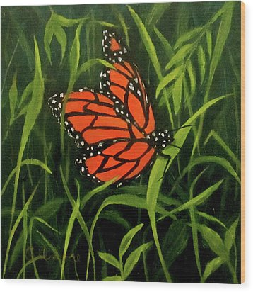 Butterfly Wood Print by Roseann Gilmore