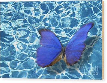 Butterfly Wood Print by Tony Cordoza