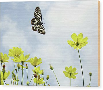 Butterfly With Flowers Wood Print by Adegsm