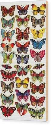 Wood Print featuring the painting Butterflys by Pg Reproductions